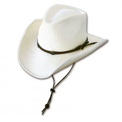 Cowboyhoed Bandit